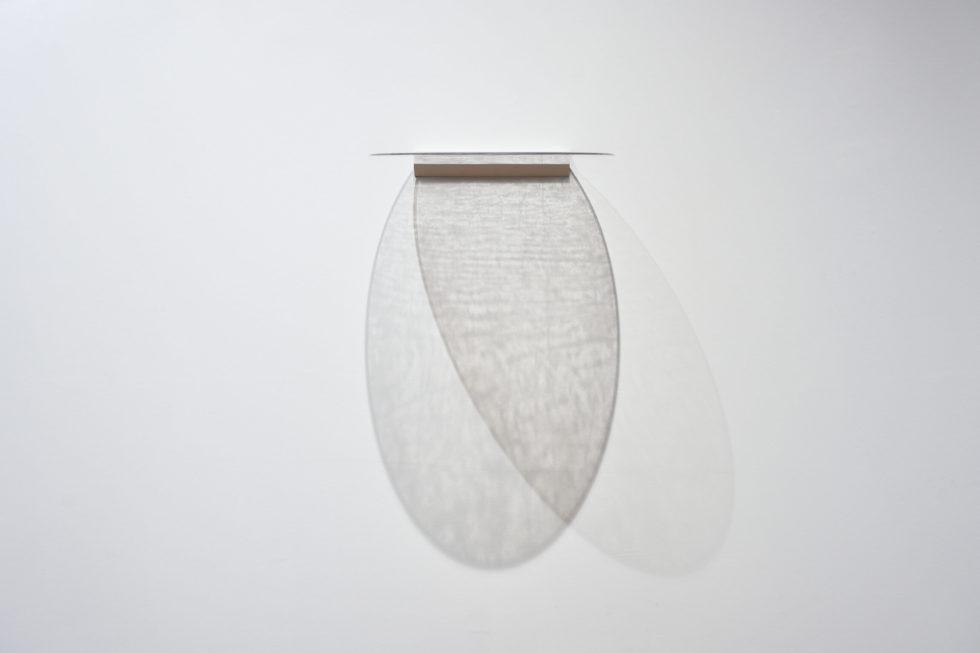 Lauren C. Steinert - Palimpsest